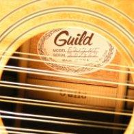 Секреты отстройки двенадцатиструнной гитары.